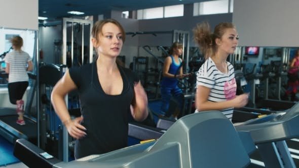 Thumbnail for Two Women Running On The Treadmill In The Gym