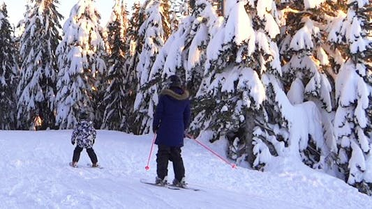 Thumbnail for Alpine Skiing Resort - 18 - Forest, Snow, Family