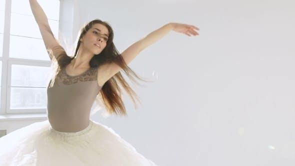Thumbnail for Silhouette Of Ballerina In Classical Tutu In The White Studio.