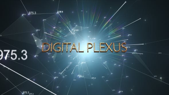 Thumbnail for Digital Plexus