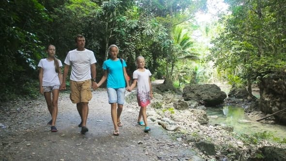 Thumbnail for Family Walks On The Walkway In Rainforest