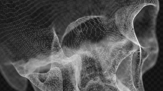 Thumbnail for Grid of Human Skull 4