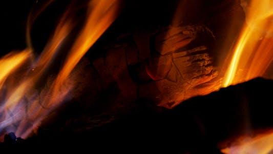 Thumbnail for Bonfire - IV - Flame, Logs, Coals