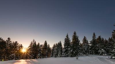 Aurora In Winter Mountain