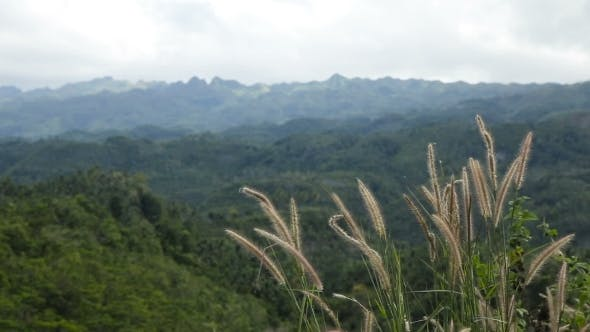 Thumbnail for Panoramic Views Of Jungle Mountains In Philippines
