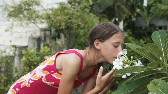 Cover Image for Young Girl Smelling  Flower On Branch