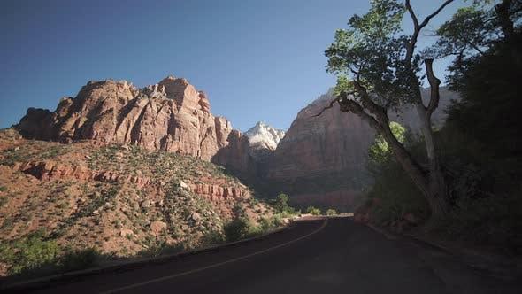 Thumbnail for Roadside Scene In Zion National Park 5