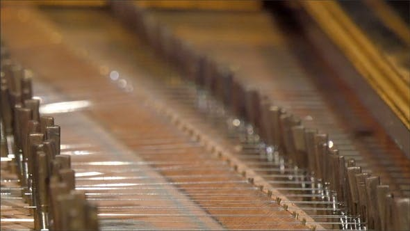 Thumbnail for The White Strings at the Back of the Piano