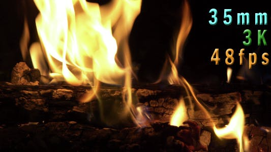 Thumbnail for Fire Pit Burning 08