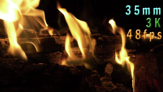 Thumbnail for Fire Pit Burning 11