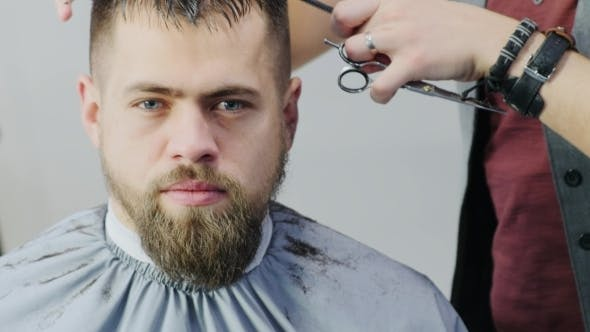 Thumbnail for The Barber Cuts Hair, Bearded Man