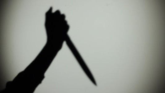 Thumbnail for Shadow of Hand with the Knife