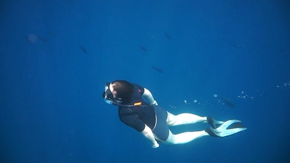 Thumbnail for Snorkeler Diving