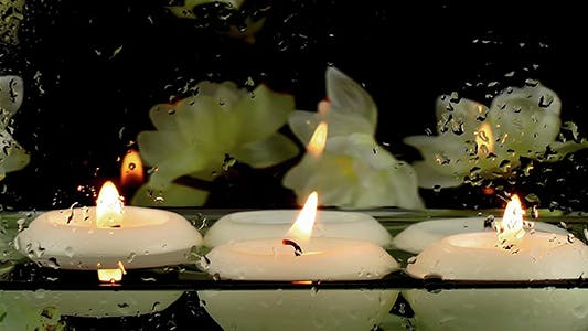 Thumbnail for Candles in the Water & Zen Flowers