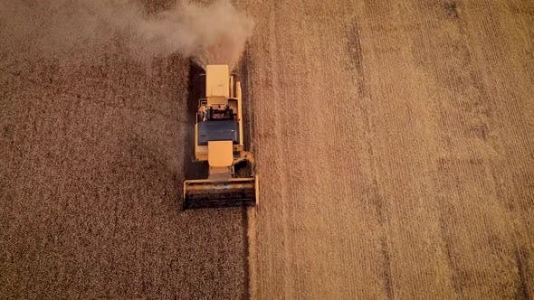 Thumbnail for Wheat Harvest Machine Aerial
