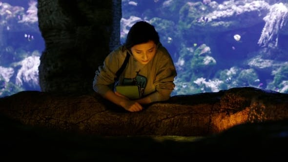 Thumbnail for Beautiful Asian Girl Admires Small Fishes