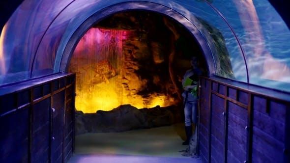Thumbnail for Curious Tourist Walking Across Oceanarium Tunnel