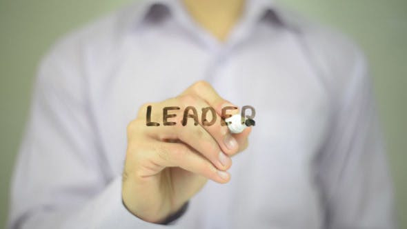 Cover Image for Leader