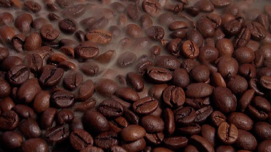 Thumbnail for Brown Coffee Beans