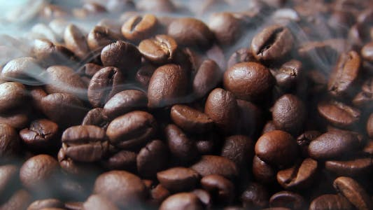 Cover Image for Fresh Roasted Coffee Beans Letting off Steam as they Cool Down.