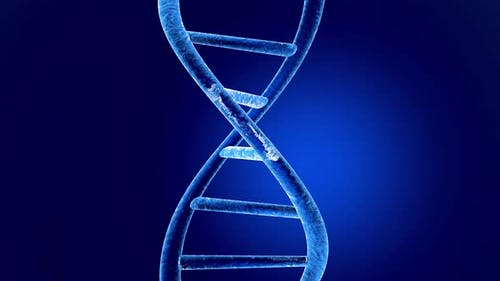 DNA Helix Animation