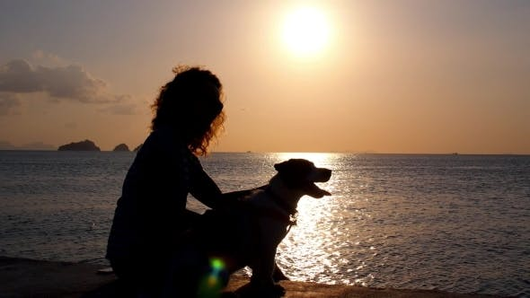 Thumbnail for Woman With Cute Dog On Beach At Sunset.
