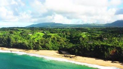 Lush Beach View In Kauai Hawaii
