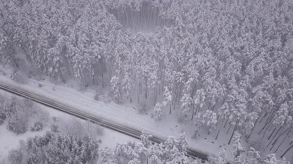Cover Image for Aerial View of Snowy Forest with a Road. Captured From Above with a Drone.