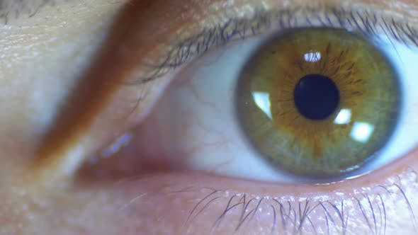 Thumbnail for Macro Close-up Male Human Eye Blinking. Slow Motion