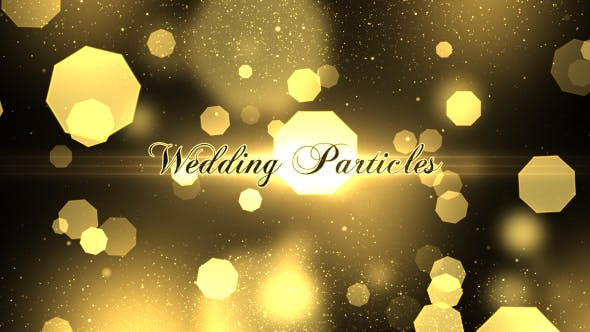 Thumbnail for Wedding Particles Opener