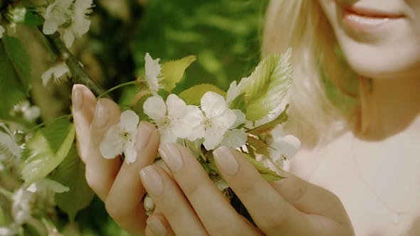 Thumbnail for Woman Touching White Flowers In The Spring Park