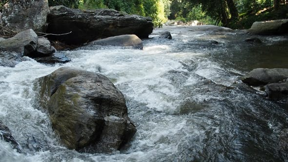 Thumbnail for Waterfall Flowing On Rocks In Forest