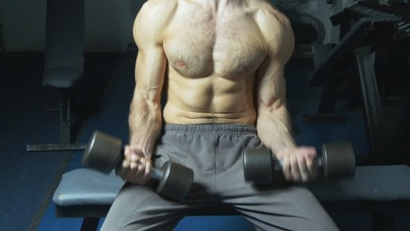 Thumbnail for Muscular Torso and Hands With Dumbbells of Man Exercising in Gym.