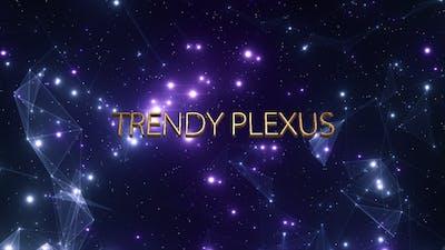 Trendy Plexus