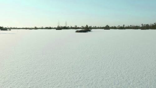 Field of the Snow
