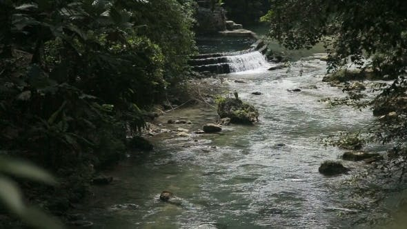 Thumbnail for River in The Rainforest in Cebu Philippines