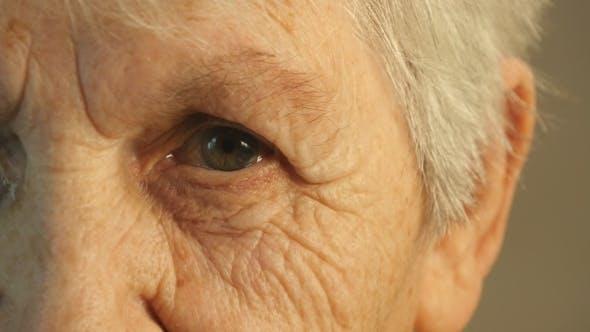 Thumbnail for Grandmother Looking At The Camera