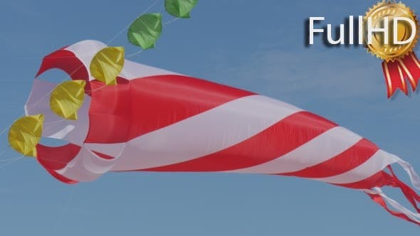 Thumbnail for Conic Red And White Air Swimmer Kite People