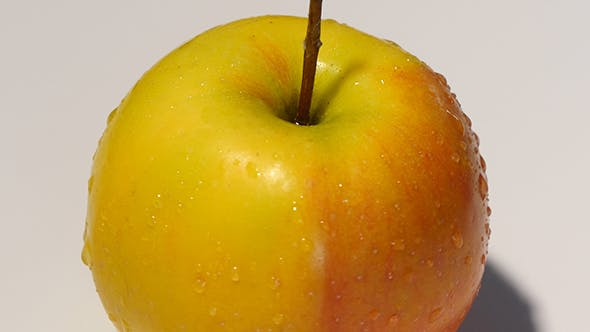 Thumbnail for Yellow Apple Rotating