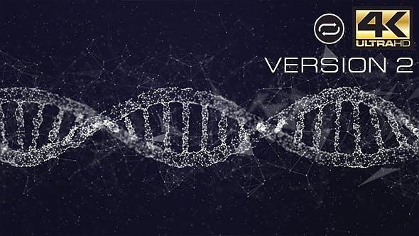 Plexus DNA V2