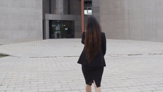 Thumbnail for Rear View Of a Stylish Businesswoman