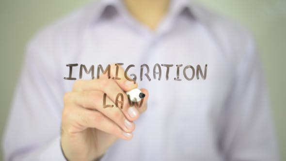 Thumbnail for Immigration Law