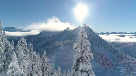 Magic Sunbeam Lighting Over Snow Covered Tree Mountaintop Aerial Flying Angle 4k