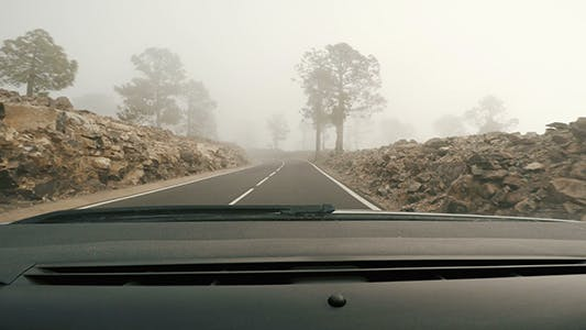 Thumbnail for Mysterious Foggy Road