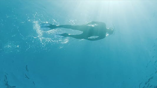 Thumbnail for Snorkeling Diver Silhouette on The Water Surface