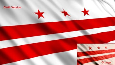 Washington Dc Flags