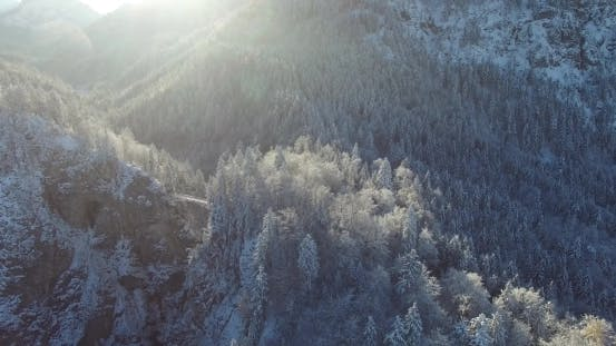 Aerial View Of The Snow-Covered Forest In The Mountains Of Bavaria