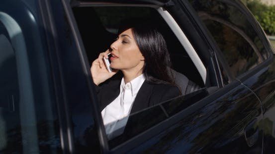 Thumbnail for Serious Young Executive On Phone In Limousine