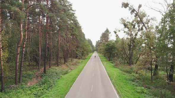 Thumbnail for Cyclist is riding on road bike on empty road in forrest. Professional triathlete is cycling on bike