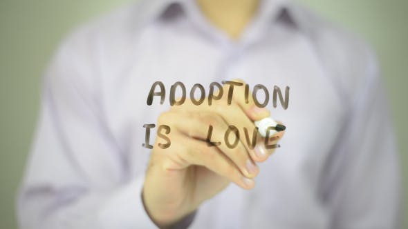 Thumbnail for Adoption Is Love